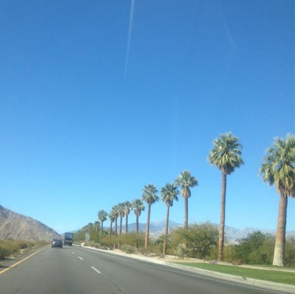 PRIMARK-Palm-Springs